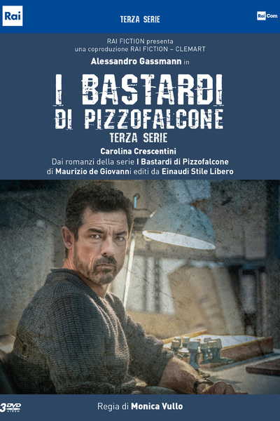 I bastardi di Pizzofalcone - Terza stagione